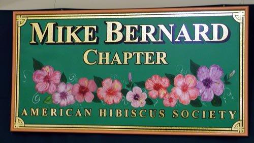 Hibiscus Doctor